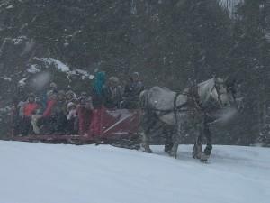 sleigh-ride-enfants2013-1